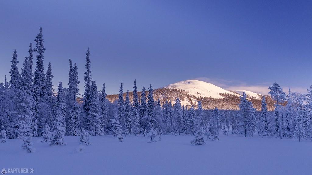 Kesänki - Lapland