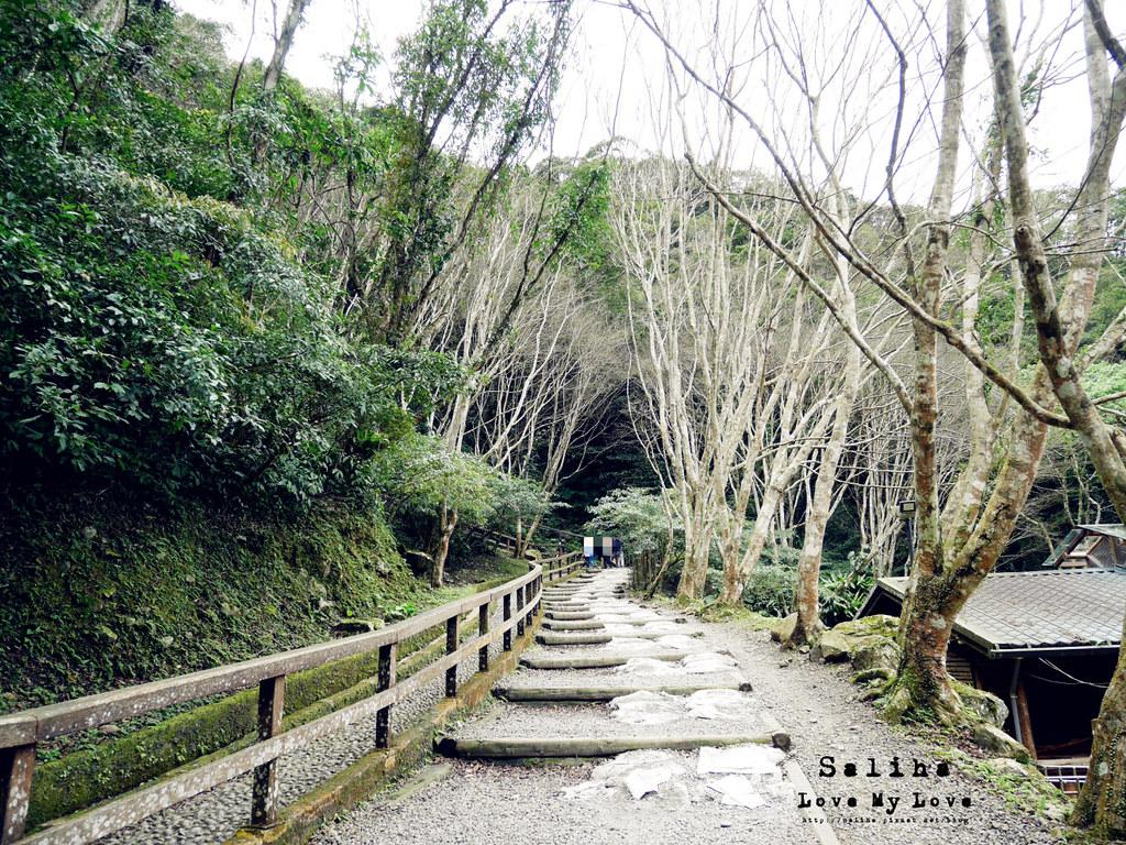 新北三峽一日遊踏青景點推薦滿月圓森林遊樂區 (18)