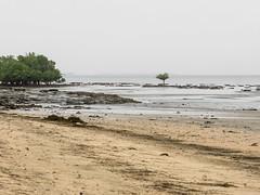 2018 Peponi beach, The beach