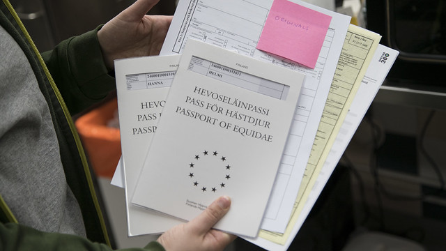 Passports for horses