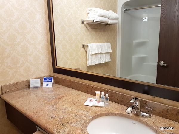 Comfort Inn & Suites Saint-Nicolas, Quebec bathroom