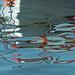 Paignton Harbour Reflection 06