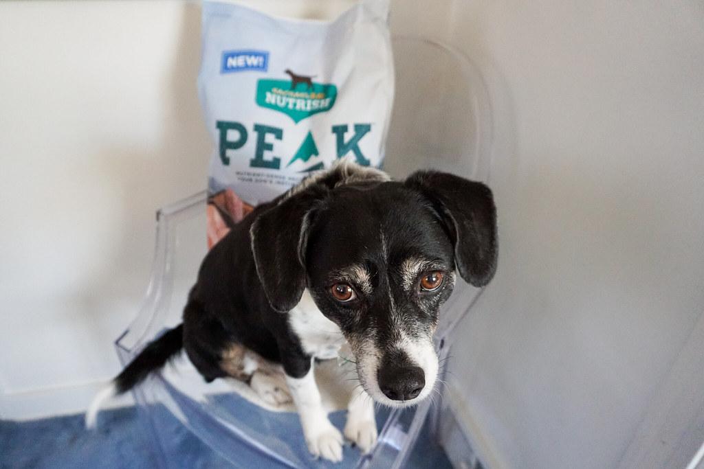 nutrish-peak-dog-food-louis-5