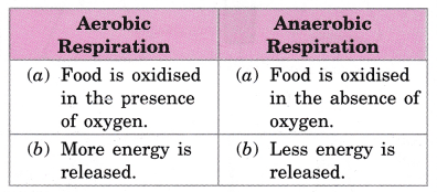 cbse-class-10-science-practical-skills-co2-is-released-during-respiration-14