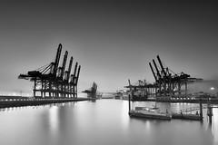 Waltershofer Hafen in B&W