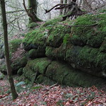 Eastern Down Copse Tor (lower outcrops)
