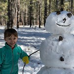 Fun in the snow by bartle_man