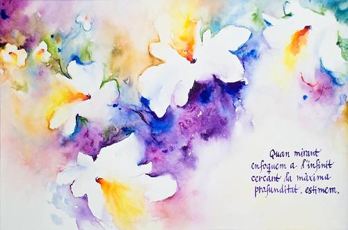 Profunditat; Ànimes nues, 2008. Flors d'aigua, aquarel·les de l'artista Eva Elias, amb texts propis manuscrits per l'autor, Ferran Cerdans Serra.