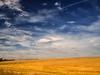 Windmühle, Wolken und Feld