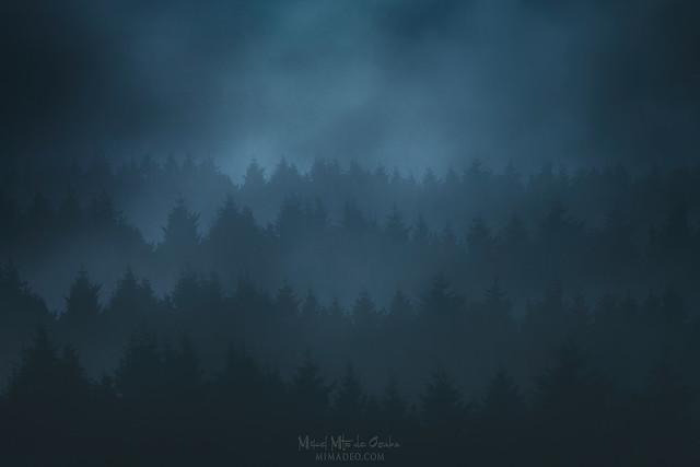 Nightwispher