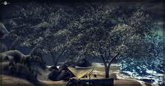 ╰☆╮La crique hivernale.╰☆╮
