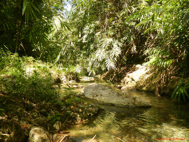 Unexplored part of the River