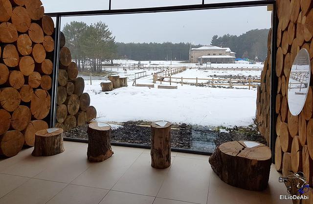 Necrópolis de Revenga y La Cerca con nieve 3