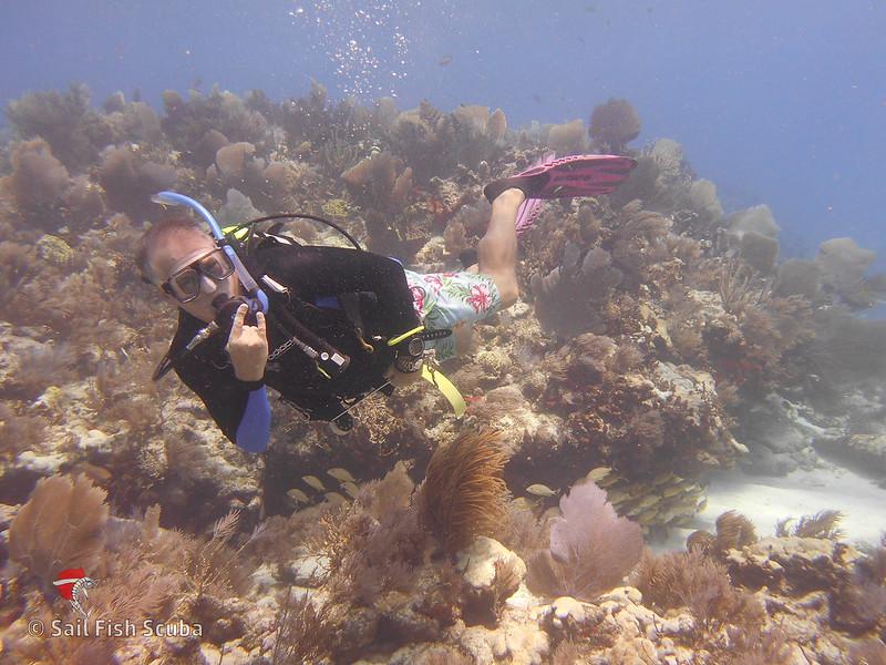 Glenn Diving