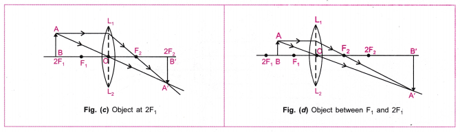 cbse-class-10-science-practical-skills-image-formation-by-a-convex-lens-9