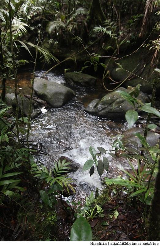 馬來西亞自由行 馬來西亞 沙巴 沙巴自由行 沙巴神山 神山公園 KinabaluPark Nabalu PORINGHOTSPRINGS 亞庇 波令溫泉 klook 客路 客路沙巴 客路自由行 客路沙巴行程23