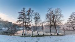 L'étang des Mousseaux en hiver