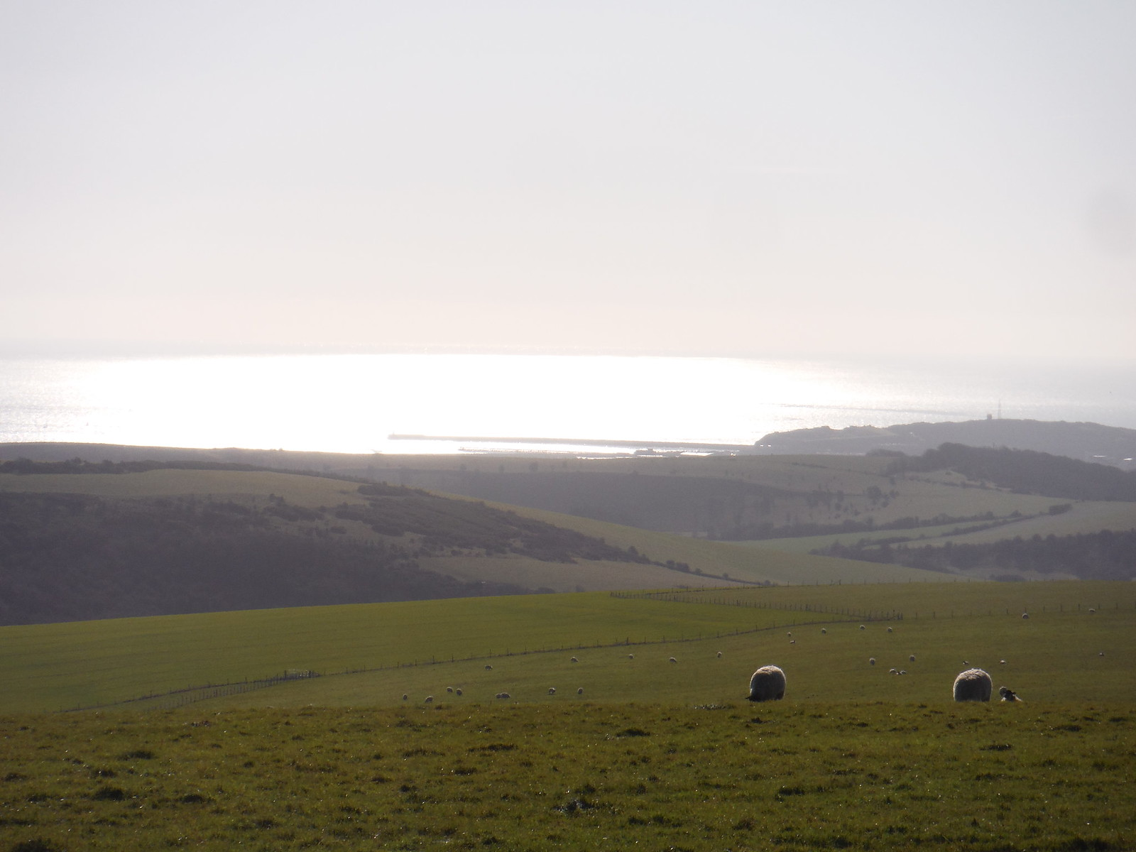 Newhaven Harbour from South Downs Ridge SWC Walk 181 - Lewes to Seaford via West Firle