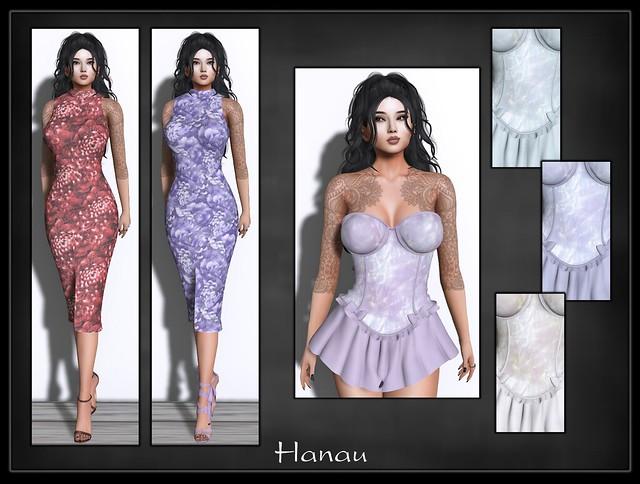 hanau1