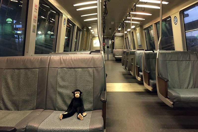 Monkey rides BART