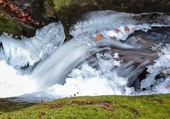 Cascades on Cedar Rock Creek