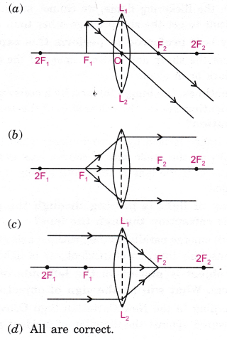 cbse-class-10-science-practical-skills-image-formation-by-a-convex-lens-14
