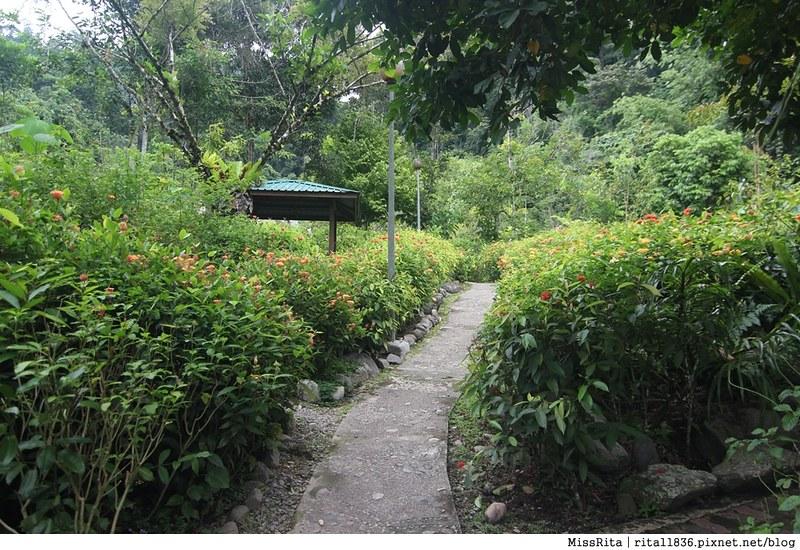 馬來西亞自由行 馬來西亞 沙巴 沙巴自由行 沙巴神山 神山公園 KinabaluPark Nabalu PORINGHOTSPRINGS 亞庇 波令溫泉 klook 客路 客路沙巴 客路自由行 客路沙巴行程78