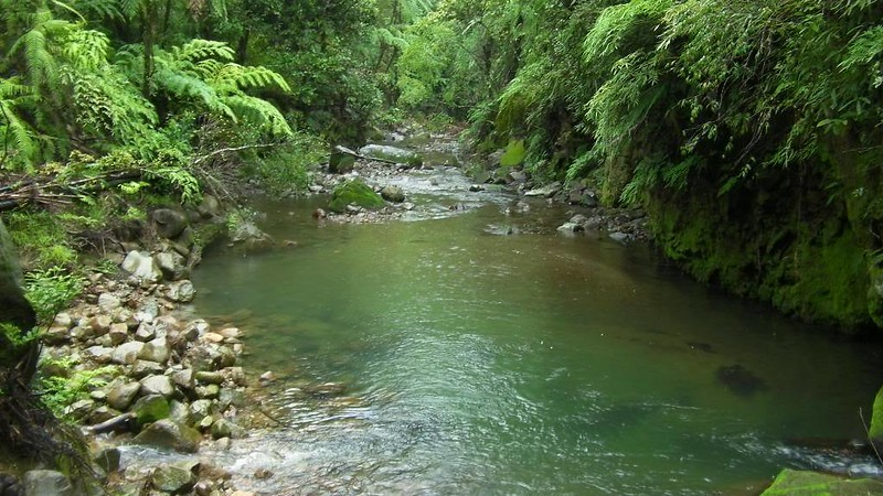 Banica River