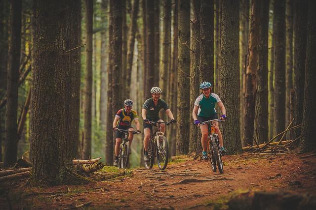 Carvins Cove Mountain Biking