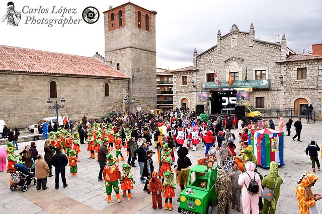 Carnaval Hoyo 35