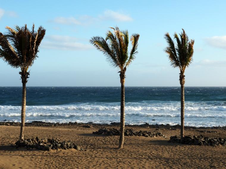 puerto del carmen beach lanzarote 6