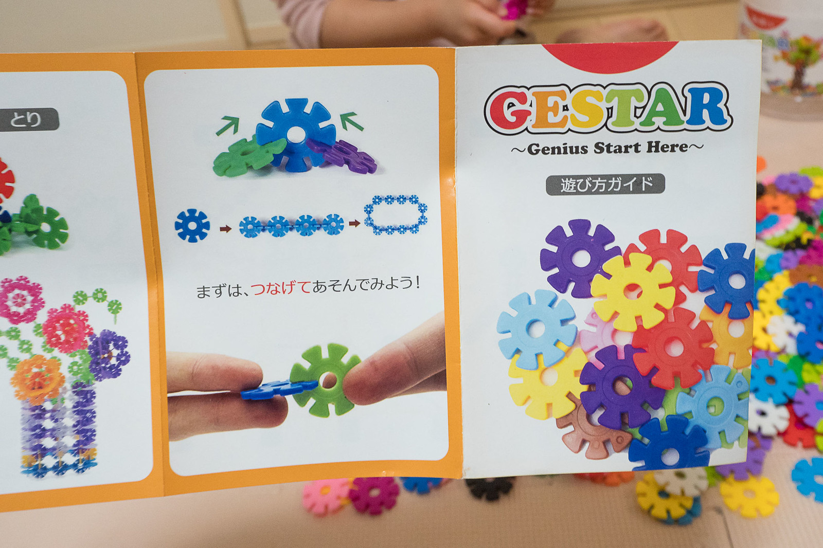 GESTAR-6