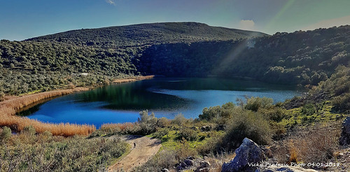 lake nature greece vonitsa