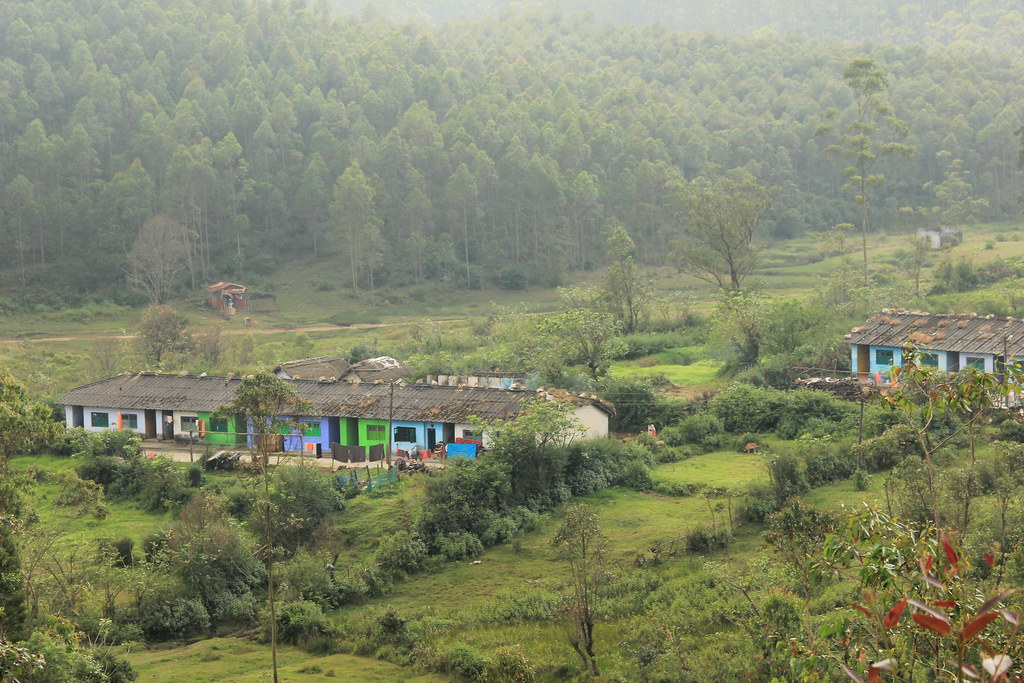 Local village, Western Ghats, Kerala