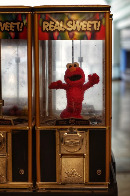 Wait!  Don't leave without Elmo!!