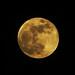 Super Blood Blue Moon 31/1/18 17.55:  31/365