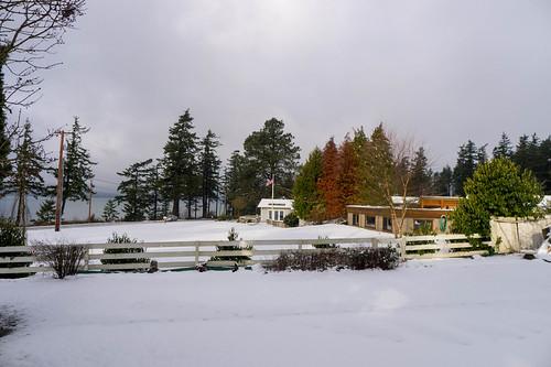 Samish Island Snow
