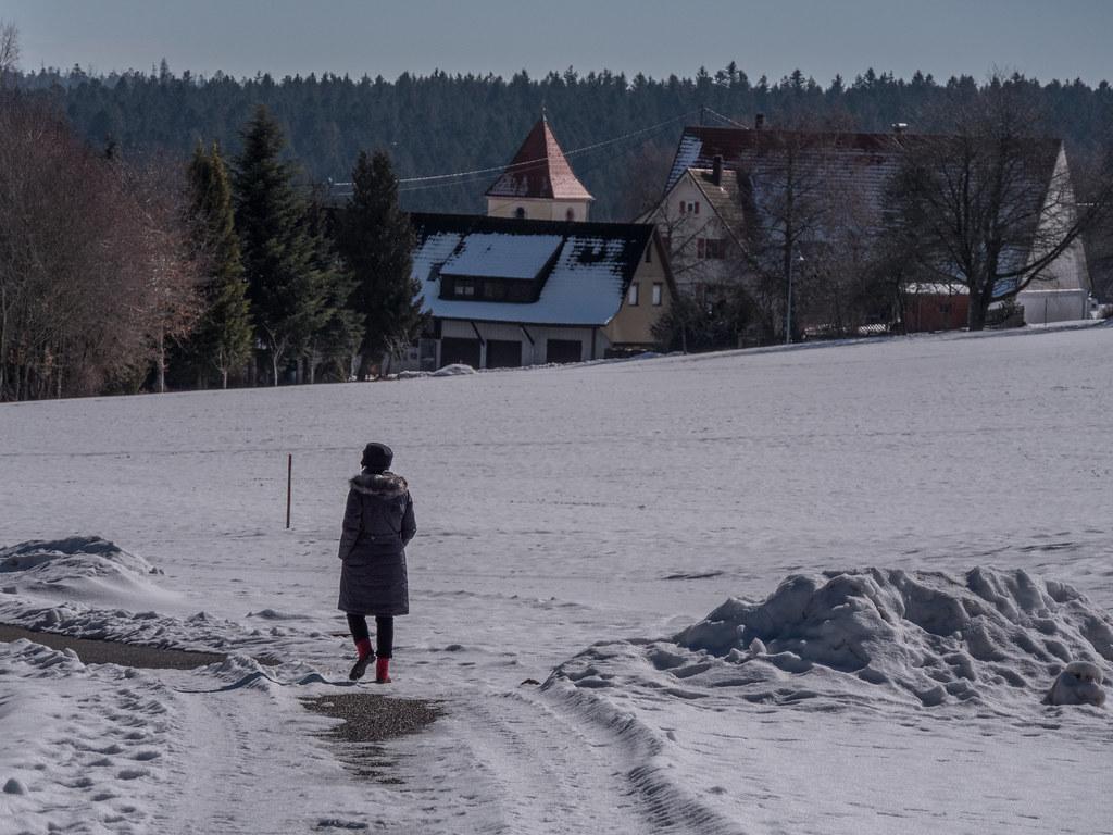 Promenade dans la neige 40605754332_f872618353_b
