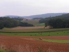 20070903 13047 0710 Jakobus Feld Wald Wiese HügelHeuballen