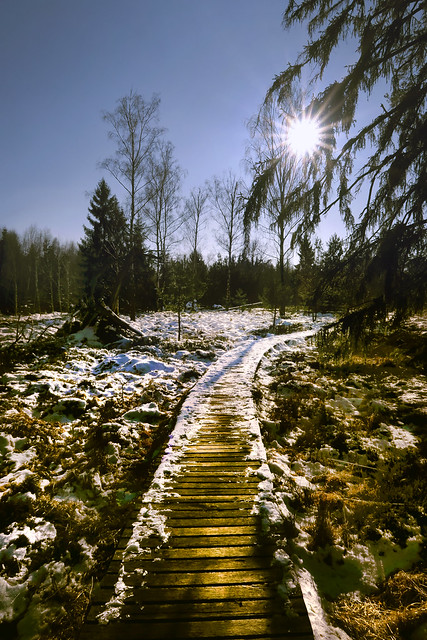 Walking towards the sun