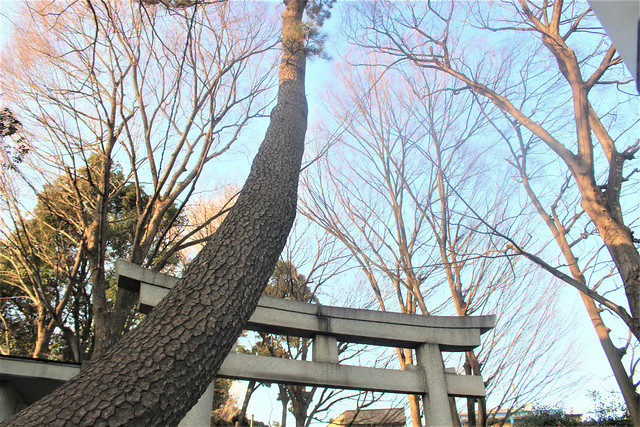 jiyugaokakumano-gosyuin01028