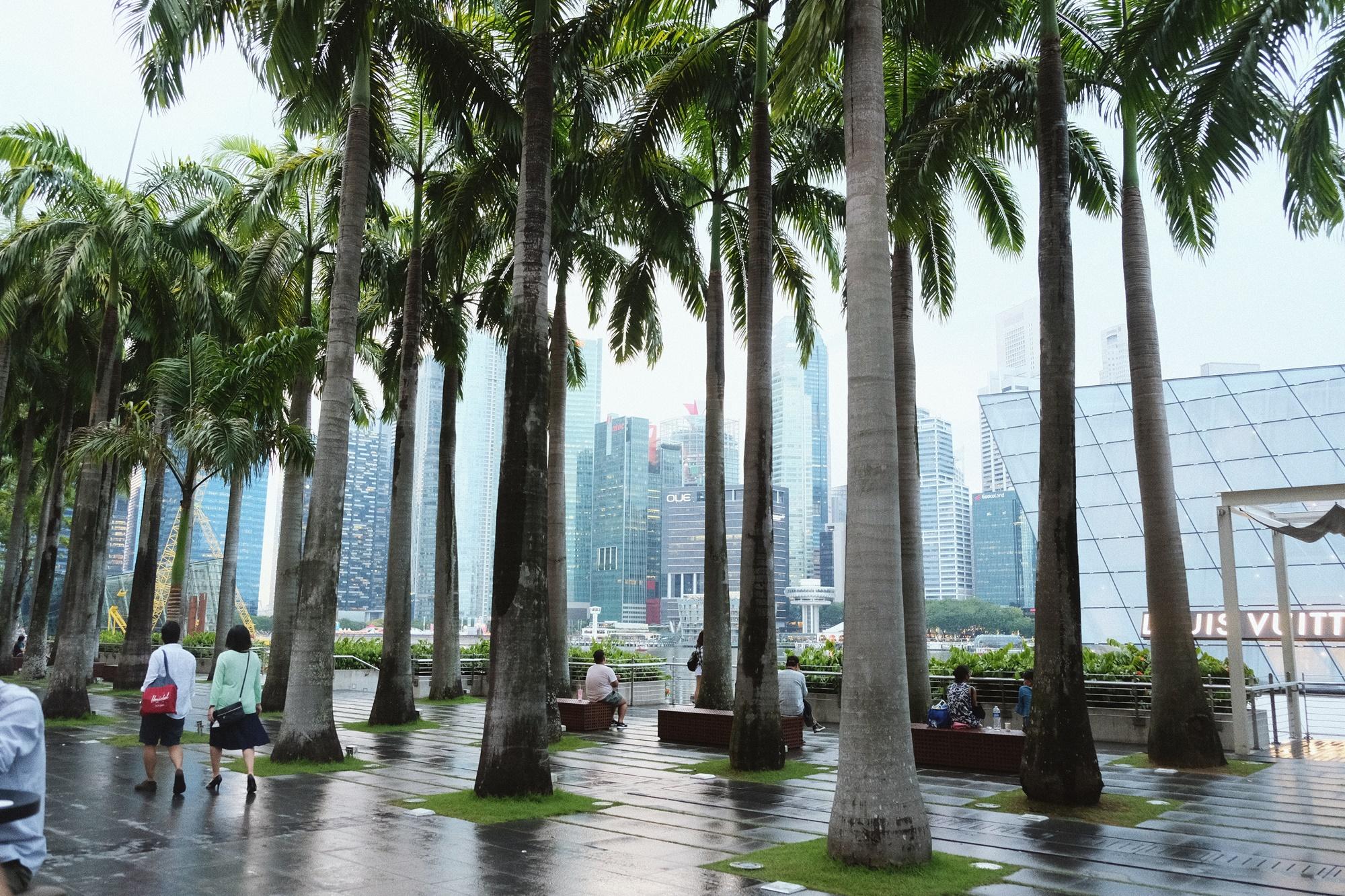 Singapore _ Vita Luna Spirit (14)