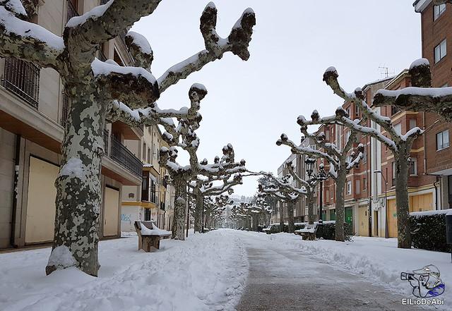 Por fin, nieva este año en Briviesca  (1)