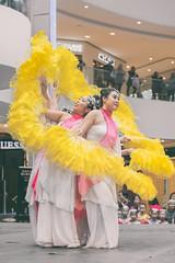 Edmonton Chinese New Year 2018