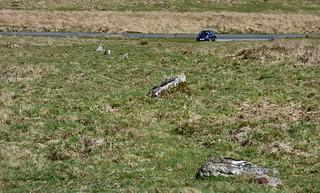 Leeden Tor stone row