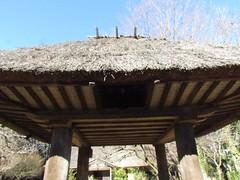 Storage of Amami Island