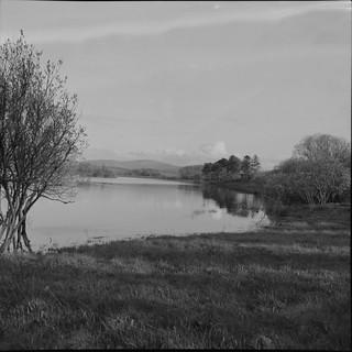 Brittas Ponds, Co. Wicklow