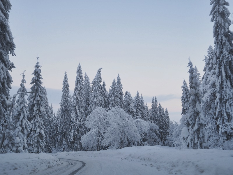 puijo talvi suomi