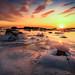 Ice Ice Baby by Richard Larssen
