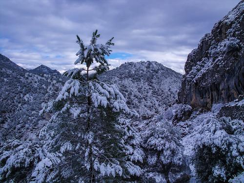 327. La Alfaguara. Cerro del Maullo.